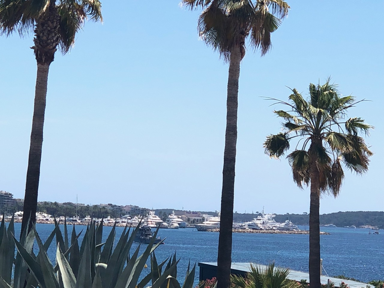 Fiona Leeming's Cannes Diary #1