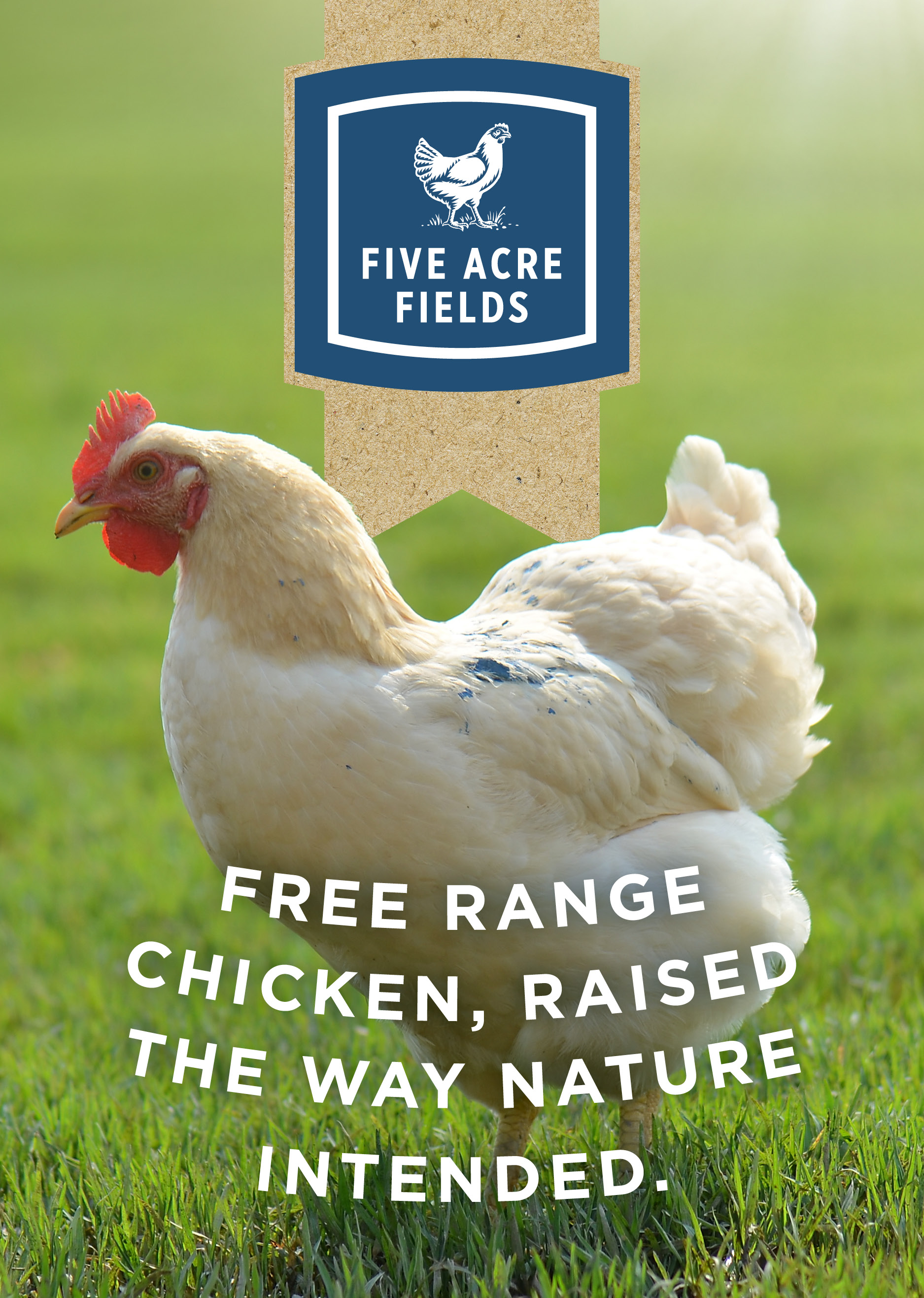 M & J Chickens appoints Melbourne agency Bellwether to handle 'Five Acre Fields' launch
