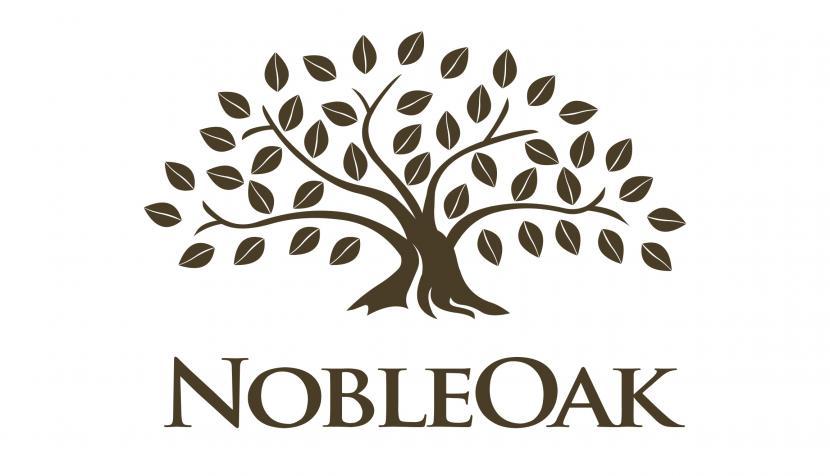 DIRECT LIFE INSURER NOBLEOAK APPOINTS CHALLENGER BRAND AGENCY MR WOLF