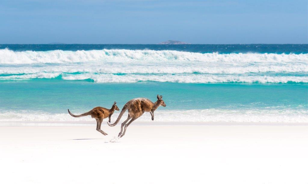 Tourism Australia appoints opr as new PR agency partner following a competitive pitch process