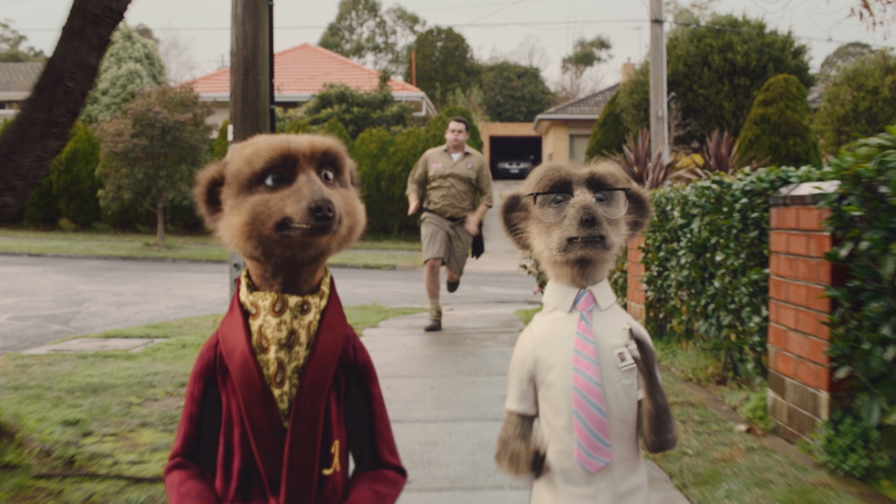 A case of mistaken identity sees the Compare The Market meerkats in the bush in new TVC via VCCP