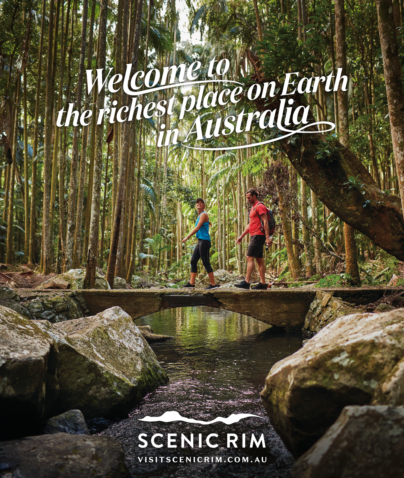 Brother & Co, Brisbane lends services with donated campaign concept to help bushfire affected Scenic Rim