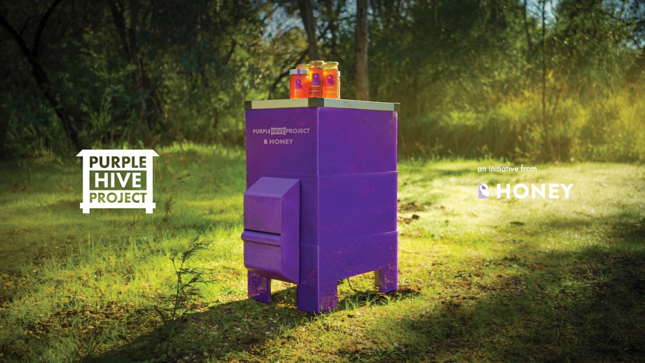Bega launches the 'Purple Hive Project' to protect Australian bees via Thinkerbell