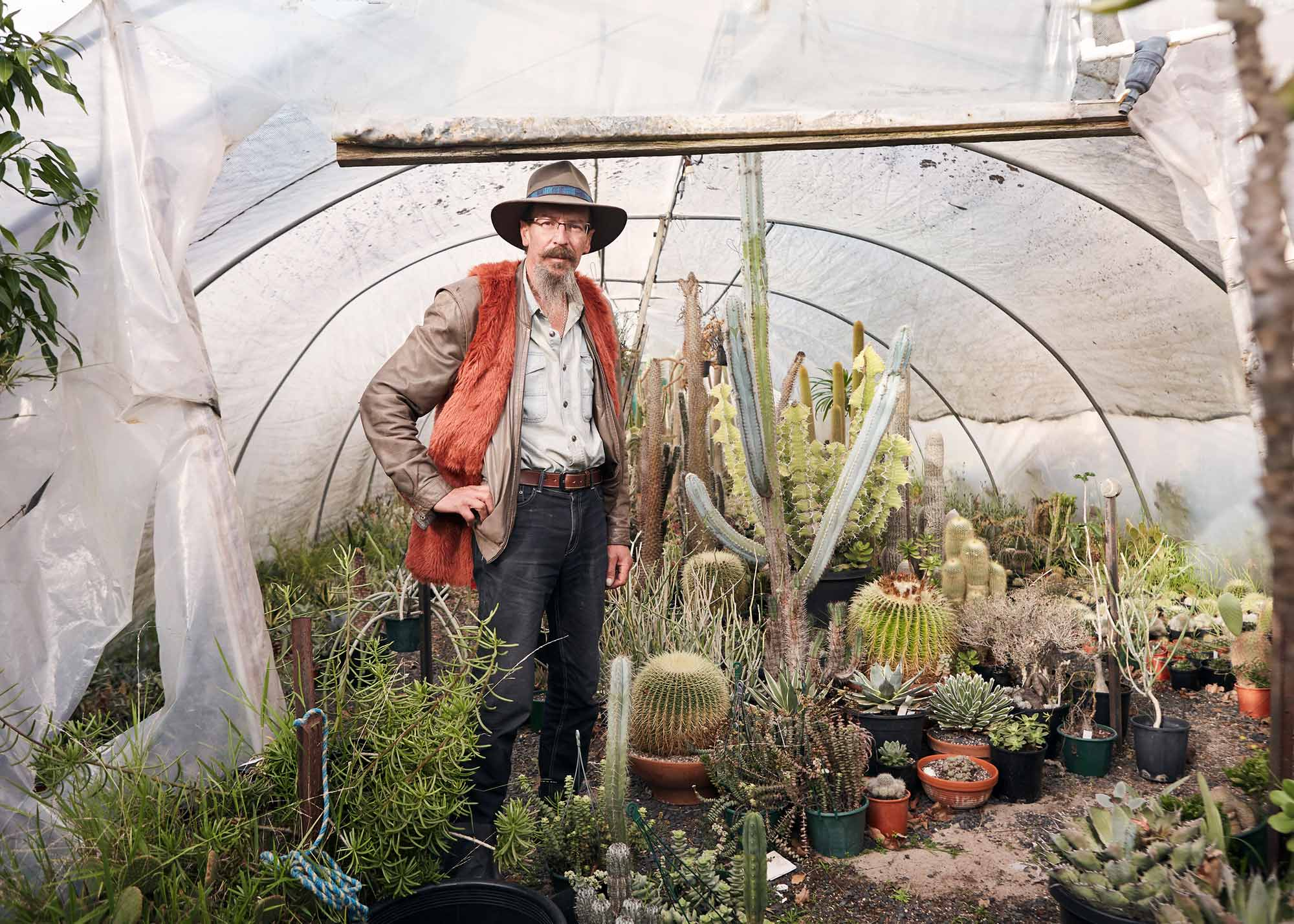 Miss Bossy Boots photographer Heather Dinas' Cactus flower blooms digitally in global exhibit