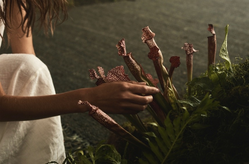 Armadillo celebrates new collection with launch of new 'Rhythm of Nature' campaign