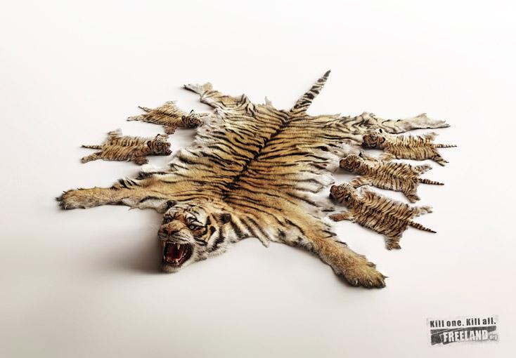 FREELAND_Tigers.jpg