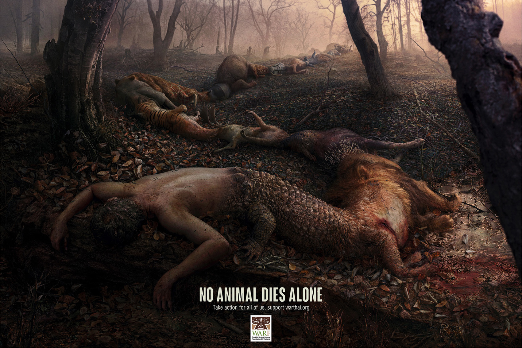 Seen+Noted: No animal dies alone