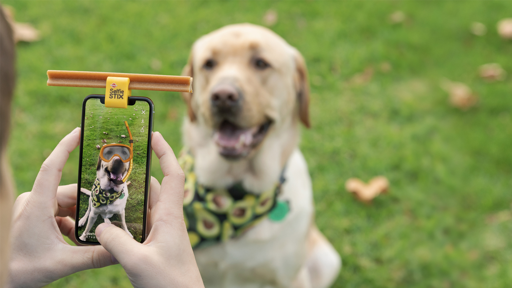 Pedigree launches new Pedigree DentaSTIX Studios platform to bring the good back to social media with dogs via Colenso BBDO