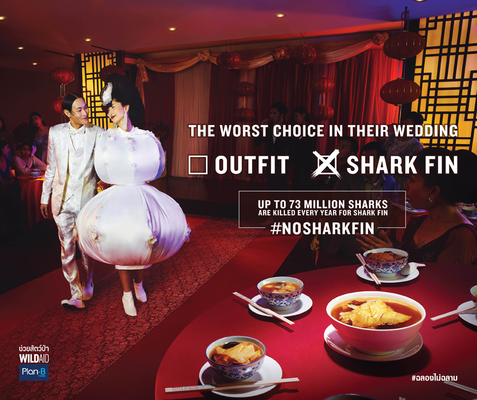 BBDO Bangkok, WildAid and Plan B Call on Thailand to Celebrate Without consuming Shark Fin