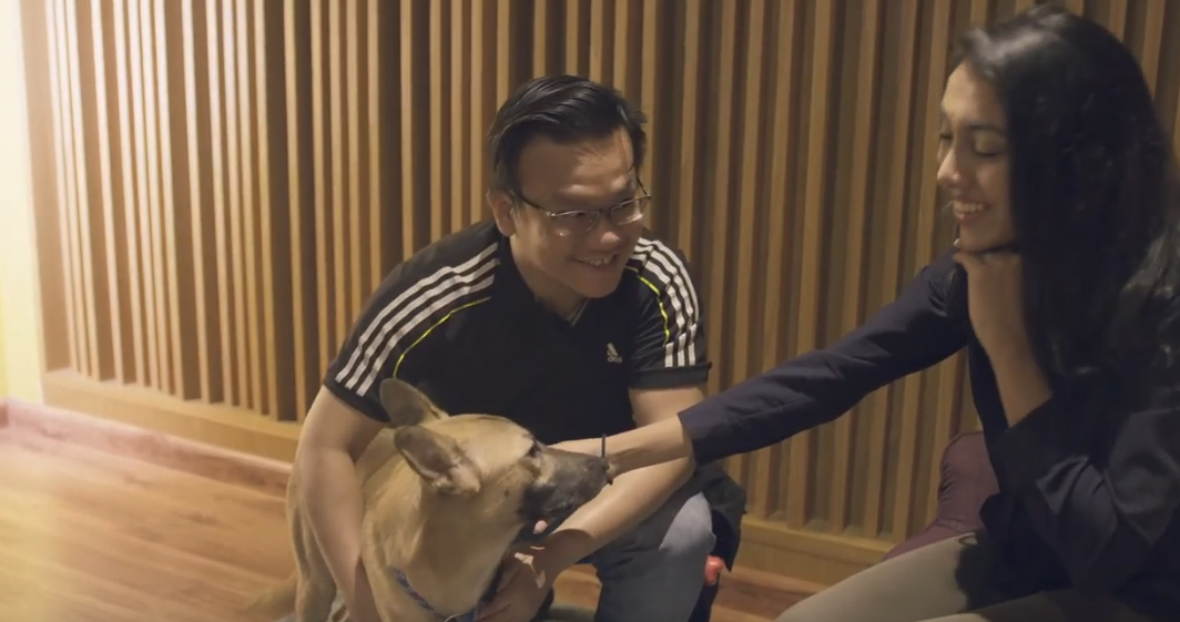 Edelman Singapore and CAS launch the perfect voiceovers film to increase understanding and adoption rates of local shelter dogs
