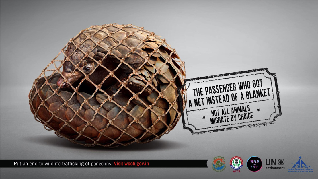 Ogilvy Mumbai releases campaign aiming to put an end to wildlife trafficking