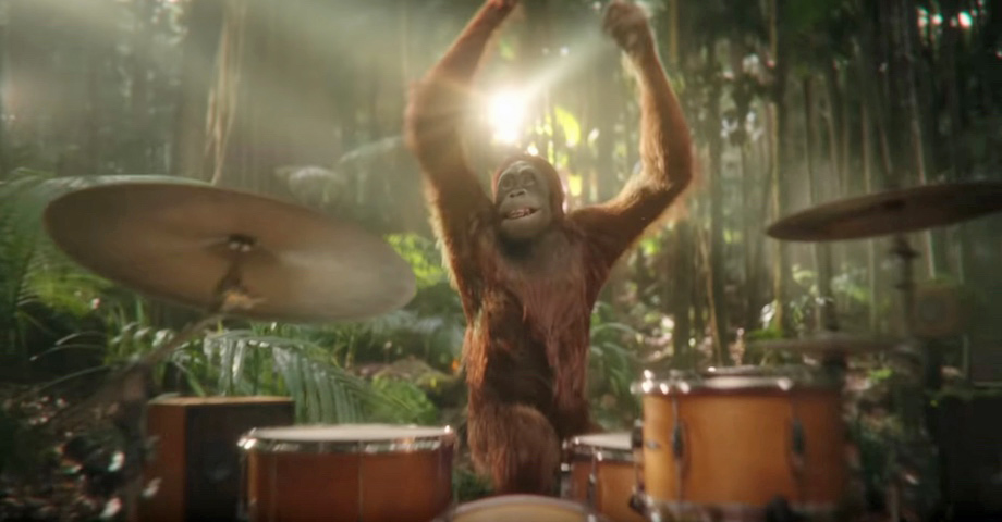 Darrell Lea goes 100% palm oil free and takes inspiration from the lauded Cadbury Gorilla commercial in new Aussie TV campaign