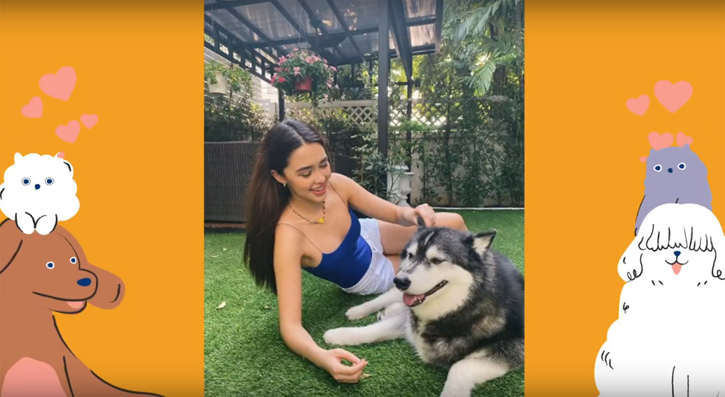 Leo Burnett Thailand and Soi Dog Foundation create user generated campaign raising money for animal shelters