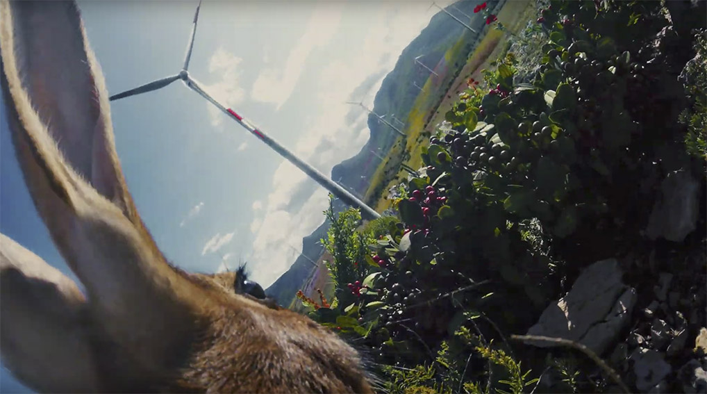TBWA\Singapore shows sustainability though the eyes of animals in Standard Chartered global campaign
