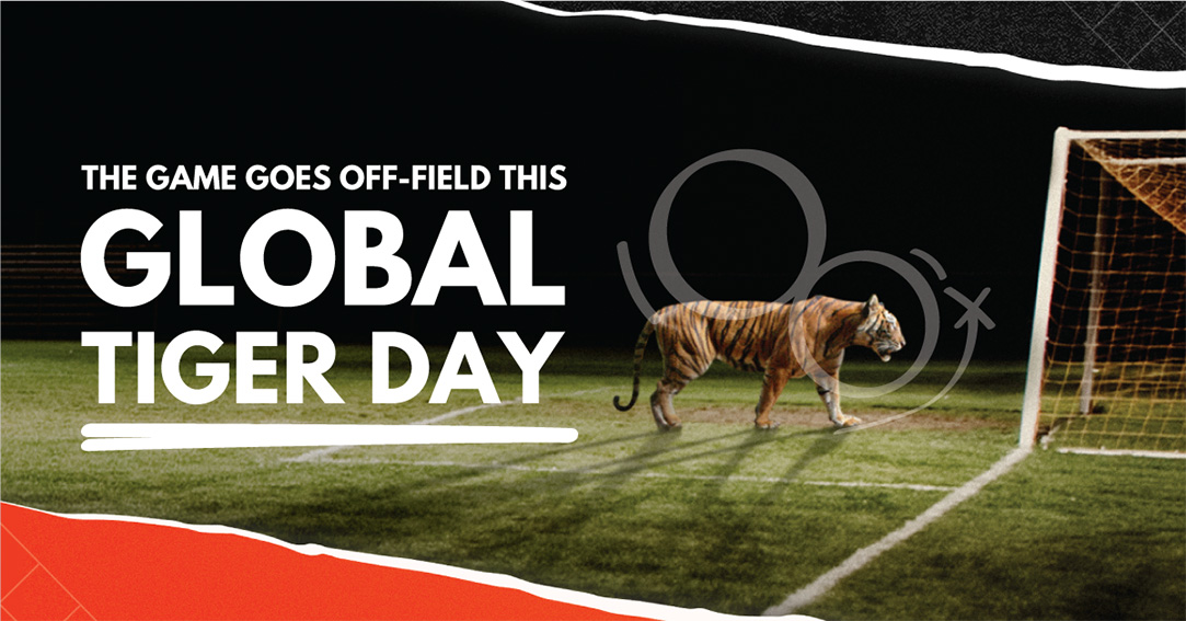 Leo Burnett Malaysia and WWF launch Score For Tigers campaign turning football fans into tiger fans