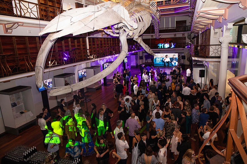 Good Times: PADC Skulls Showcase
