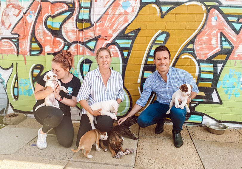 Tonic Digital lends a hand to support animal charity Dogs' Refuge Home in Shenton Park