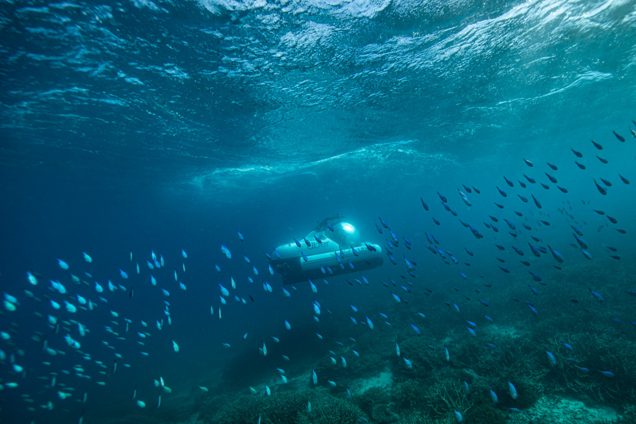 Tourism & Events Queensland partner with Uber to launch world's first rideshare submarine 'scUber' via Publicis Worldwide and Herd MSL
