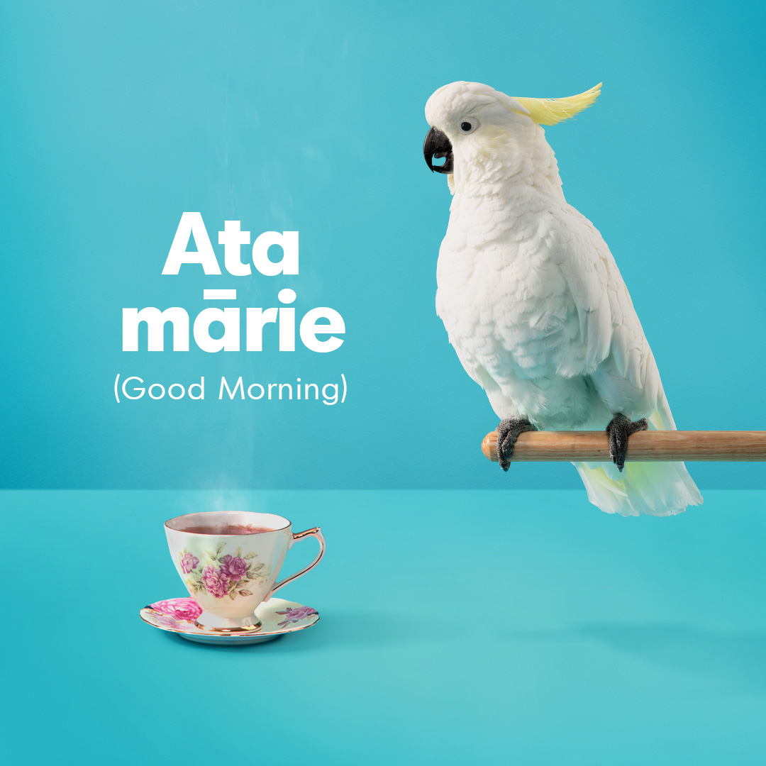 Māori Language Commission challenges the nation to speak more te reo Māori than a cockatoo in newly launched campaign via Augusto