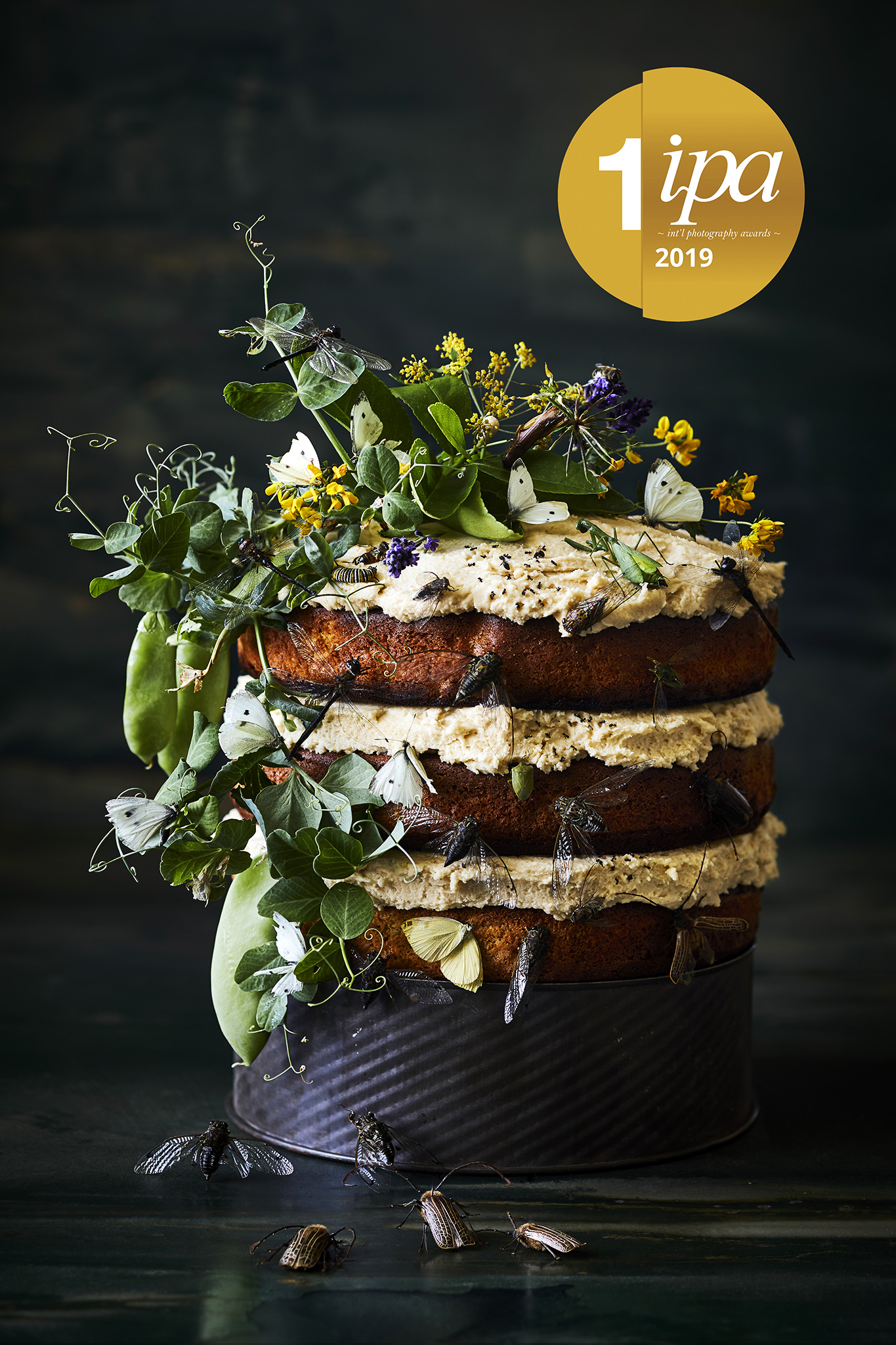 Insects a winner for top Kiwi food photographer Manja Wachsmuth