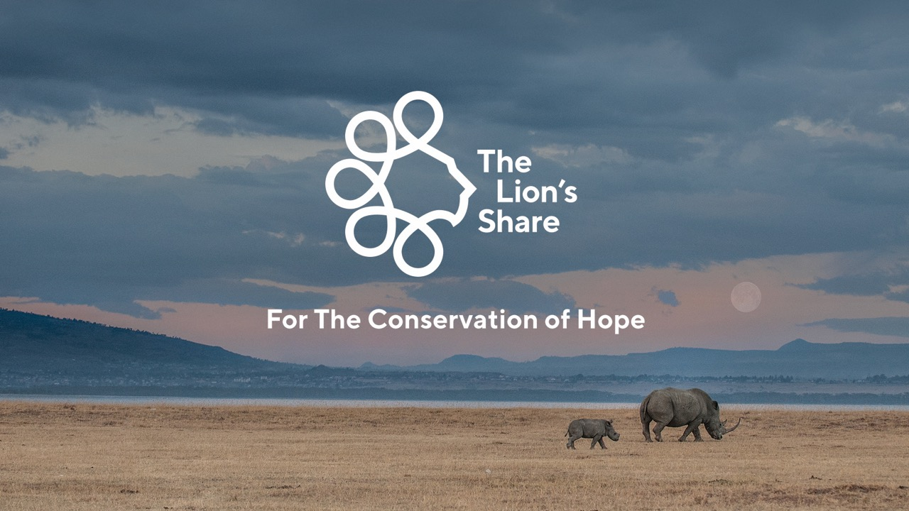 Cannes Lions announces €279,000 distribution of Sustainable Development Goals Lions proceeds; The Lion's Share Fund, winner of the SDG Lions Grand Prix 2019, receives donation