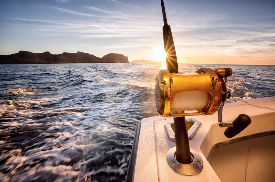 Maritime New Zealand appoints Federation as new behaviour-change agency following a 4-way pitch