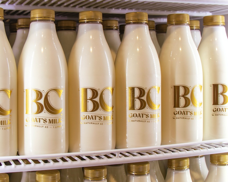 Pitchblack launches 'Before Cow' Goat's Milk